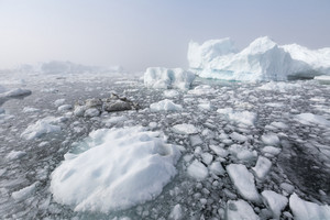 Ice floes floating in the ocean on a foggy day