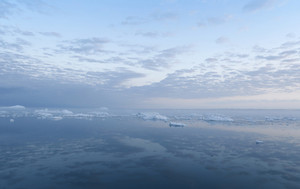 Ice floes reflected under a cloudy sky