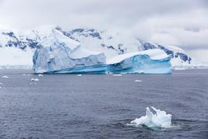 Iceberg along a snowy, foggy coast