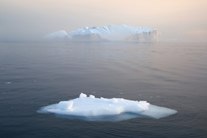 Iceberg and ice floe on a foggy day