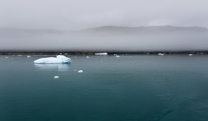 Icy water along a foggy coast