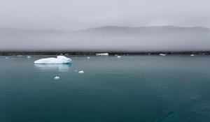 Icy water along a foggy coast