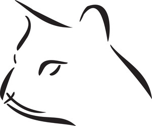 Illustration Of A Cat's Face.
