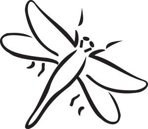 Illustration Of A Cicada.