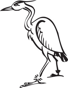 Illustration Of A Crane Bird.