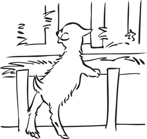 Illustration Of A Goat Standing With Support.