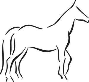 Illustration Of A Horse Of Arab.
