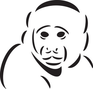 Illustration Of An Ape's Face.