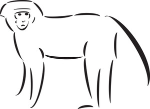 Illustration Of An Standing Monkey.