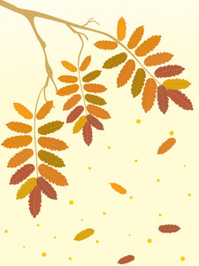 Illustration Of Autumn Tree Branch