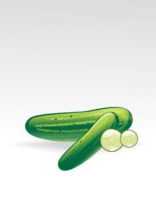 Illustration Of Vegetarian Wallpaper