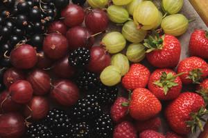 Fresh Summer Fruit Selection
