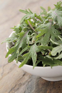 Baby Kale Salad Leaves
