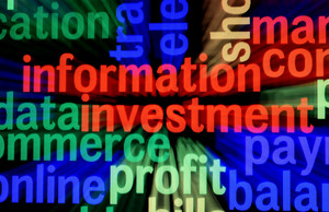 Information Investment Profit
