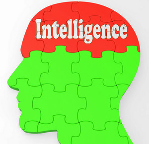 Intelligence Brain Shows Knowledge Information And Education