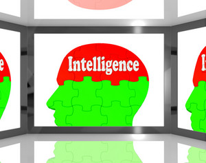 Intelligence On Brain On Screen Showing Human Knowledge