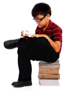 Intelligent Boy Reading A Book