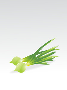 Isolated Glossy Veg With Background