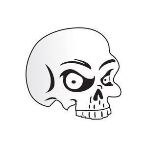Isolated Skull On White Background