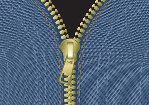 Jeans Zipper. Vector.