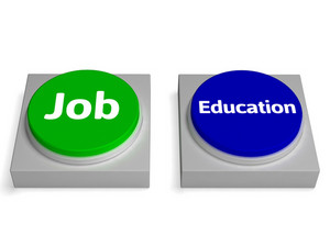 Job Education Buttons Shows Employed Or At College