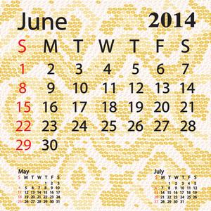 June 2014 Calendar Albino Snake Skin