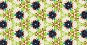 Kaleidoscope Floral