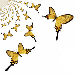 Kaleidoscopic Butterflies Illustration