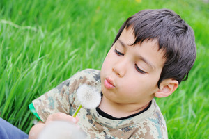 Kid blowing dandelion in nature