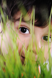 Kid eyes closeup grass plant