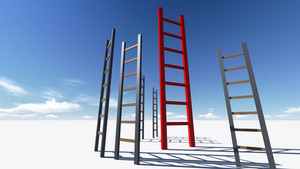 Ladder Of Success