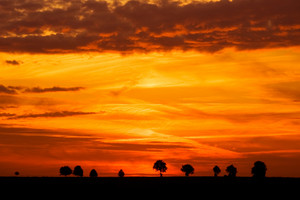 Landscape photographed during vivid sunset over tranquil countryside