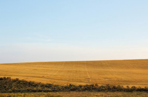 Landscape View Background