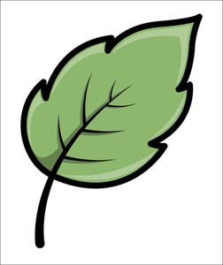 Leaf Cartoon Vector Illustration Royalty Free Stock Image Storyblocks