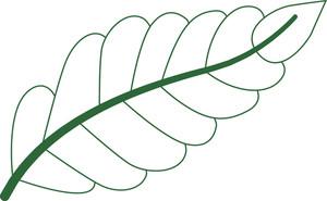 Leaf Shape Design