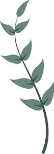 Leaf Twig