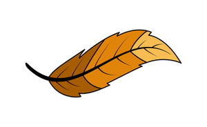 Leaf Vector Design