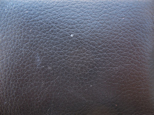 Leather 15 Texture