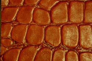 Leather 21 Texture