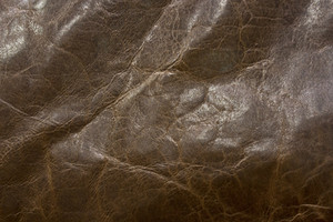 Leather Texture 10