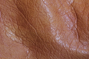 Leather Texture 4
