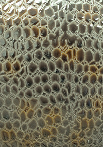 Leather Texture 9
