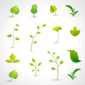 Leaves Icons Vectors
