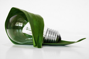 Light  Bulb And Leaf Concept