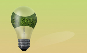 Light Bulb With Text  Go Green