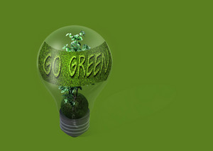 Light Bulb With Text  Go Green