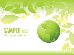 Lime Leaf And Globe Isolated On White