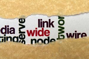 Link Concept