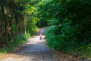 Little boy running and playing in forest at summer. Beautiful summer forest landscape with one small boy.