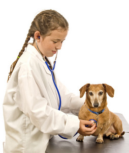Little Girl Pretending To Be A Veterinarian